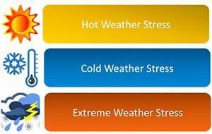 weatherstress300x190